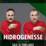 hidrogenesse-16t2