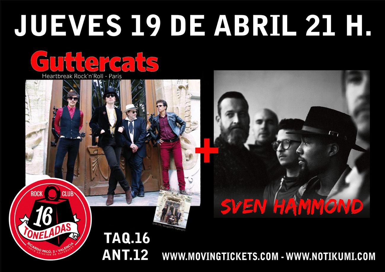 16t-sven-guttercats-web